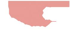 Acronytor Logo